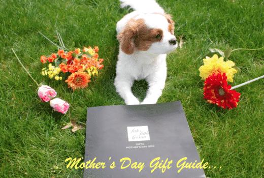 mothersday mothersdaygiftguide giftguide puppy puppylove dog pet shop blogger missyonmadison saks saksfifthavenue flowers spring roses kingcharlescavalier